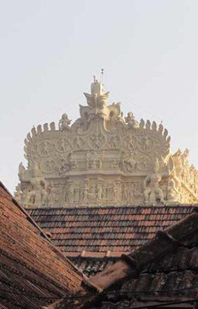 The only glimpse of the Padmanabhswamy Temple of Trivandrum we managed to catch