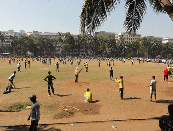 India's national sport