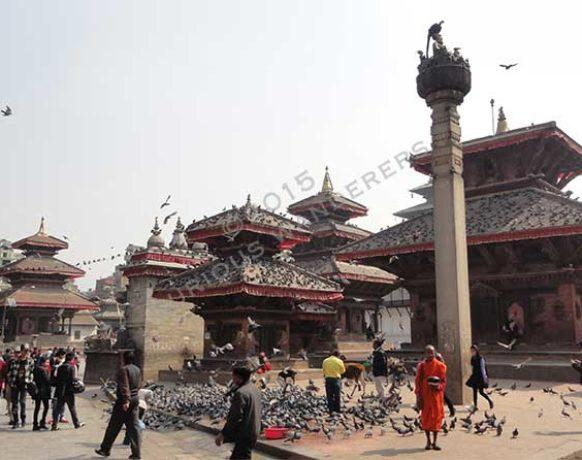 Pigeons visiting Durbar square, Kathmandu