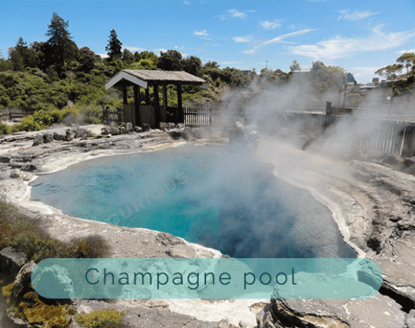 Champagne-pool