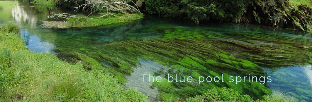 The-blue-pool-springs