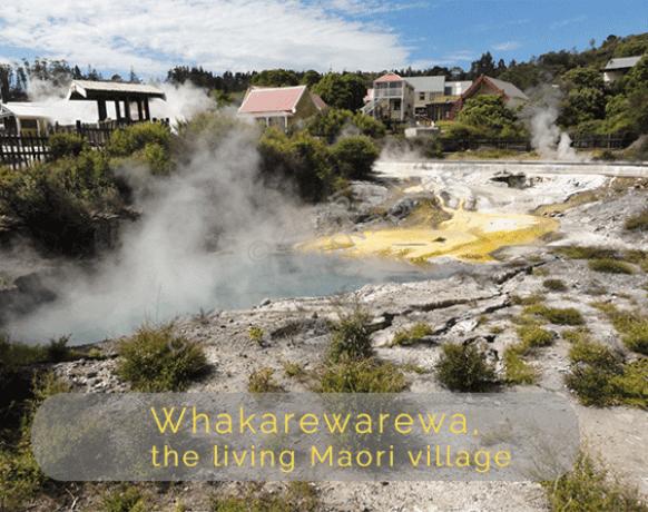 Whakarewarewa-the-living-Maori-village