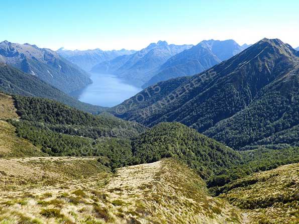 Fiordland-view