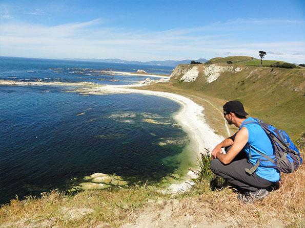 New Zealand's wild coast